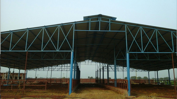 Dairy Equpment Spares Dairy Farms Shed Design