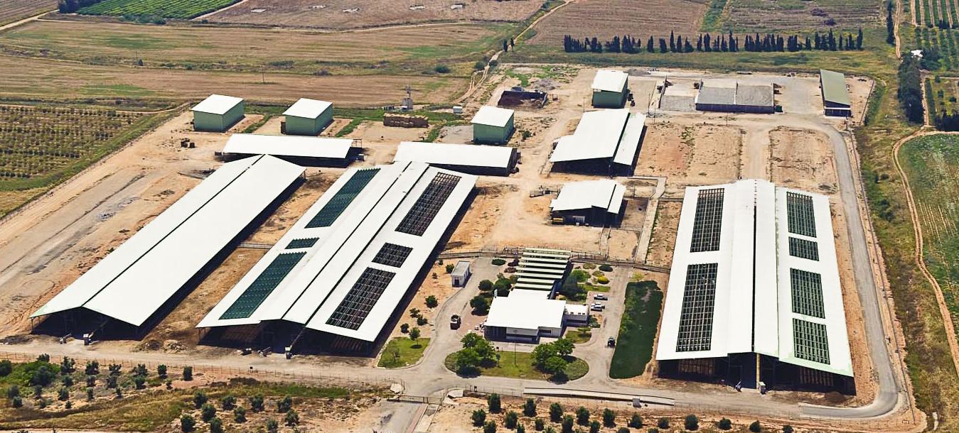 Dairy Equpment Spares Farms Shed Design